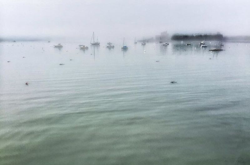 Water Foggy Foggy Morning Fog_collection Boats CarolSharkeyPhotography Maine