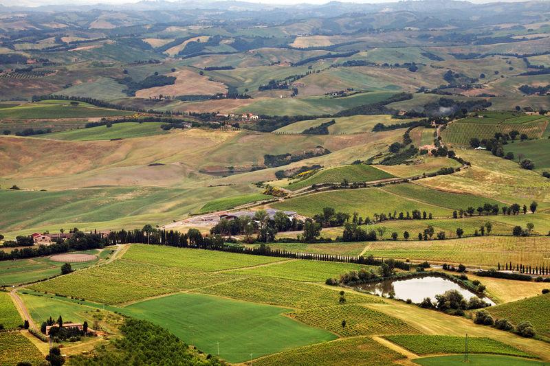 Idyllic view of patchwork landscape