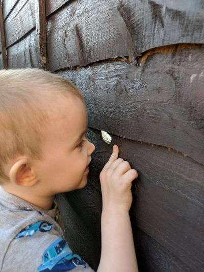 Close-up of boy looking through hole in wooden wall