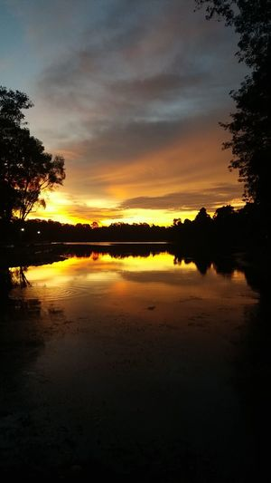what a view! Evening Sun Sunset Colors Nature Walk Forest Walk Lake View Nature Nature Landscape Water And Landscape Water Reflections Water Ripple Rainforest Tree Water Sunset Reflection Silhouette Lake Sky Landscape Cloud - Sky Dramatic Sky Atmospheric Mood Romantic Sky Reflection Lake Reflecting Pool