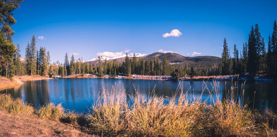 Lake surrounded