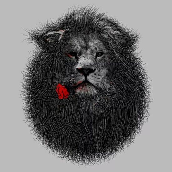 The Lion and Rose Design Deviantart Ilustration Instagram ilustración instagood paint artist artcollective art artnerd diseño