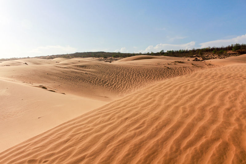 Arid Climate Beauty In Nature Clear Sky Day Desert Extreme Terrain Landscape Nature No People Outdoors Sand Sand Dune Scenics Sky Tranquil Scene Tranquility