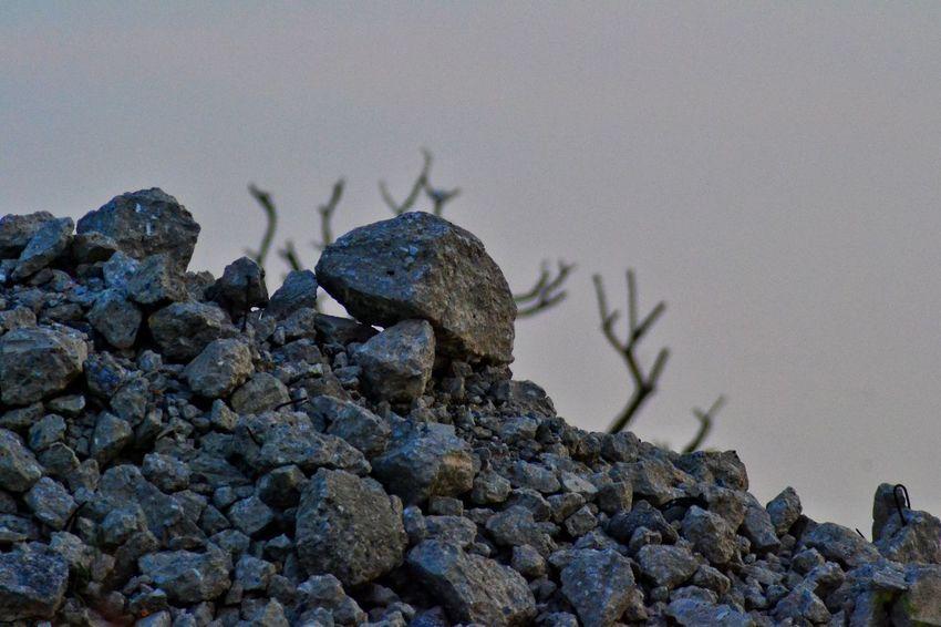 Stone Pile Of Stones