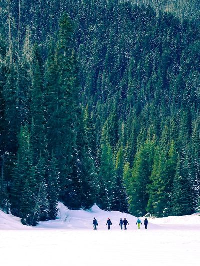 Distant view of friends walking on snow covered field against trees