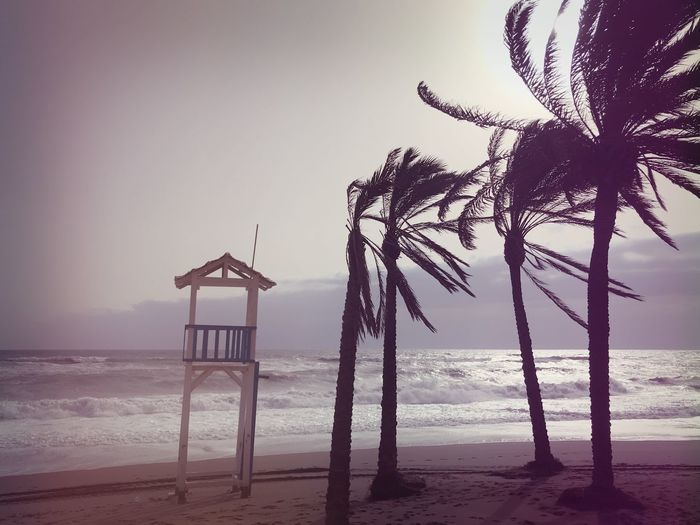 A bit stormy… Place For Text Wind Stormy Weather Storm Beach Water Sky Sea Horizon Over Water Land Horizon Sand Nature Beauty In Nature Scenics - Nature No People Built Structure Outdoors