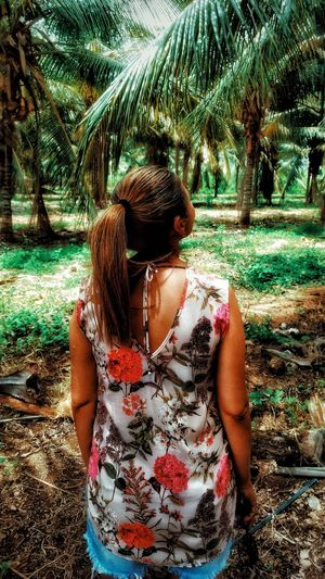 Coqueiros Coqueiros Real People One Person Lifestyles Tree Outdoors Day Leisure Activity Nature Women Adult People