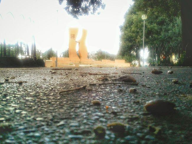 """Ghiande"". Piazza Monuments Monumento Ground Ghiande Eicheln Acorns Smartphone Photography S3mini Eyeemfilter"