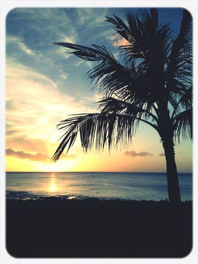 Sunset on Hawaii. Hawaii Honolulu  Paradisecove Sunset