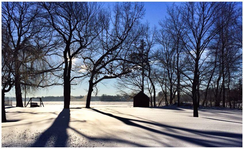 Silhouette Winter Winter Wonderland Snow Snow ❄ Trees TreePorn Lake Light And Shadow Light
