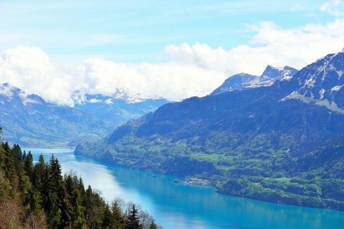 View from Harder Kulm, Interlaken, Switzerland. Mountains and a lake. Alpine Alps Beauty In Nature Cloud - Sky Day Glacier Harder Kulm Harderkulm Interlaken Lake Landscape Mountain Mountain Range Nature No People Outdoors Sky Swiss Swiss Alps Swiss Mountains Switzerland Switzerland Alps Tree Water