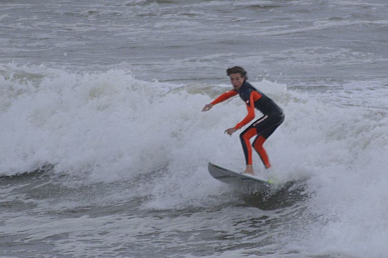 """""""The Surfer"""""""