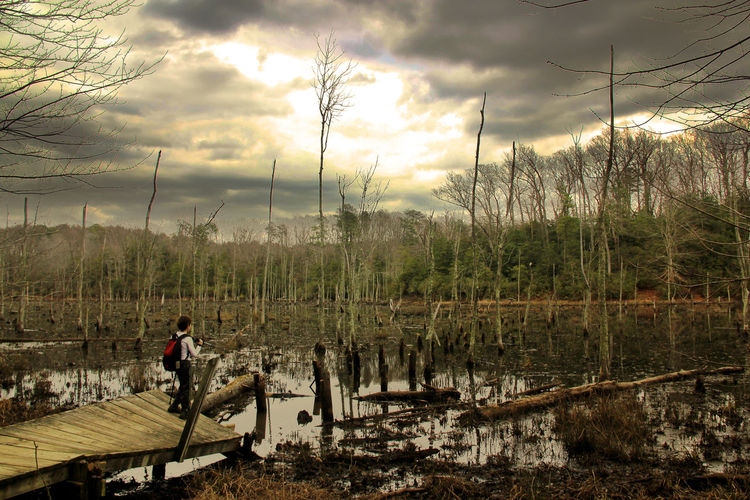 Boy Standing On Damaged Jetty Over Swamp In Forest Against Cloudy Sky