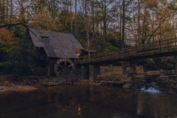Bridge over river amidst trees and house in forest