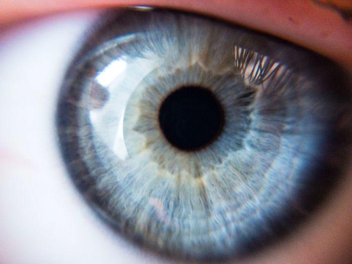 Blue Eyes Eyes