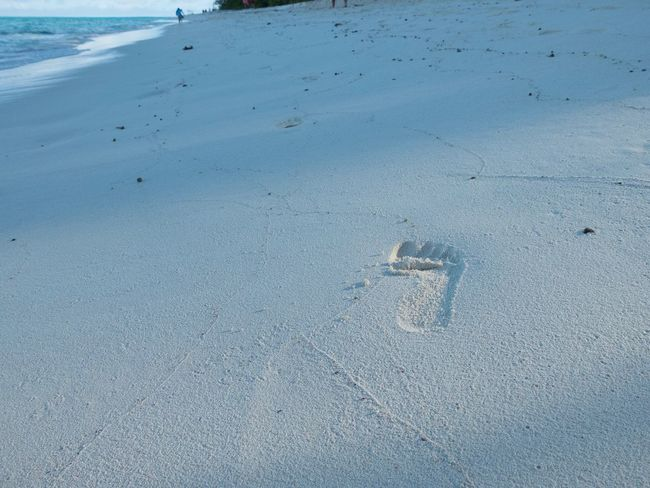 Ce froid me donne envie de retourner là bas Beach Outdoors Sand Track - Imprint Beauty In Nature No People Lost Alone Islandlife Nouvelle Calédonie Ile Des Pins Robinson