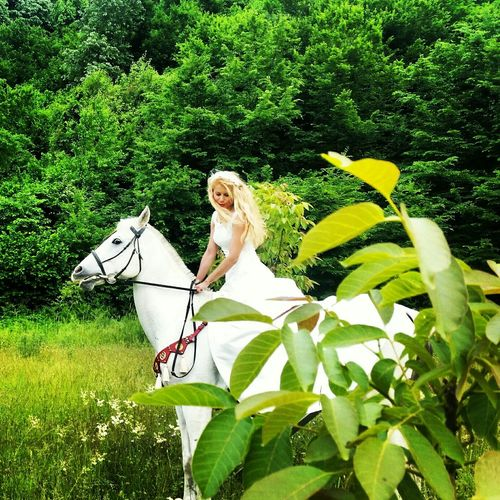 ı Love Horses White Horse Endurance Beautiful Nature Green Green Green!  EyeEm Best Shots Instalove Arabian Horse