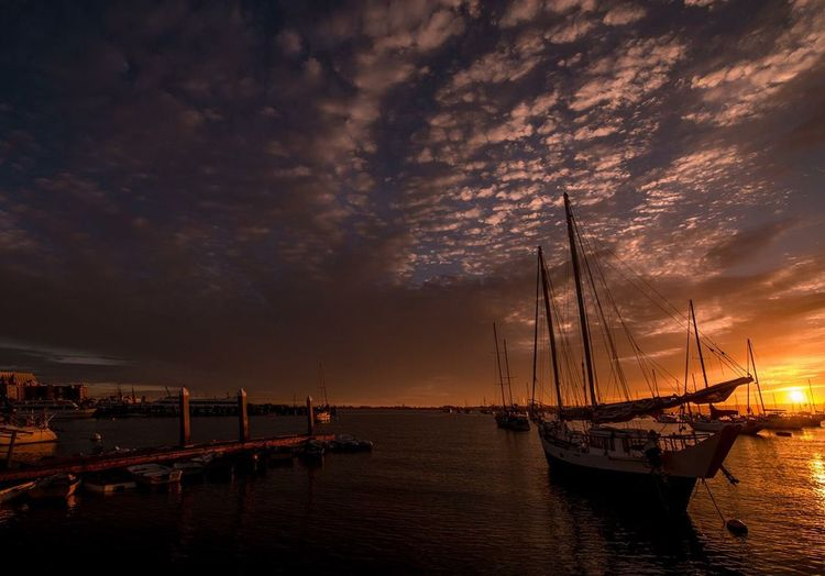 """That Zen Moment"" Sunset on the bay - San Diego, CA Sunset Harbor Paul W Koester Photography Artist Perspective On The Bay San Diego San Diego Harbor Sunset On The Bay Tranquil Scene Sailboat"