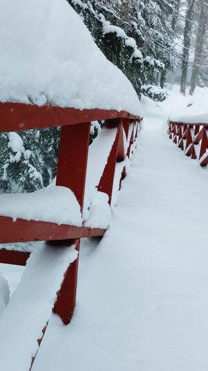 Beautiful pristine snowfall.....