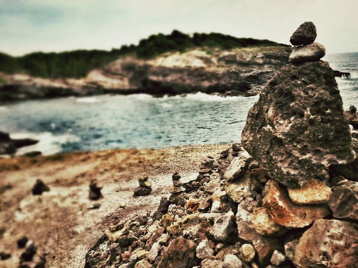 Taking Photos Photography Check This Out EyeEm Nature Lover