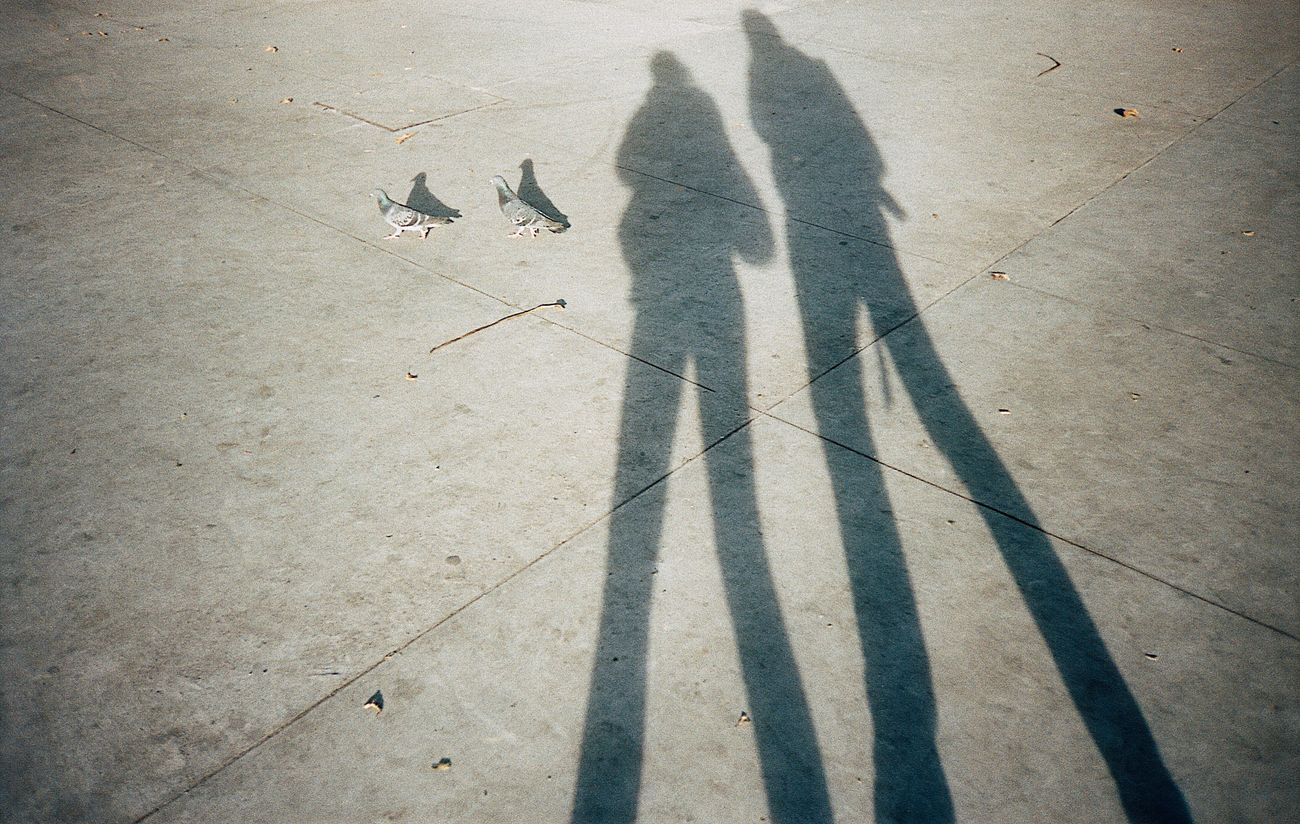 Together Shadow