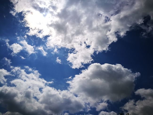 Cloud - Sky Blue Sky Nature Spirituality Day Flying No People Outdoors Backgrounds Beauty In Nature Mountain Bird Tree