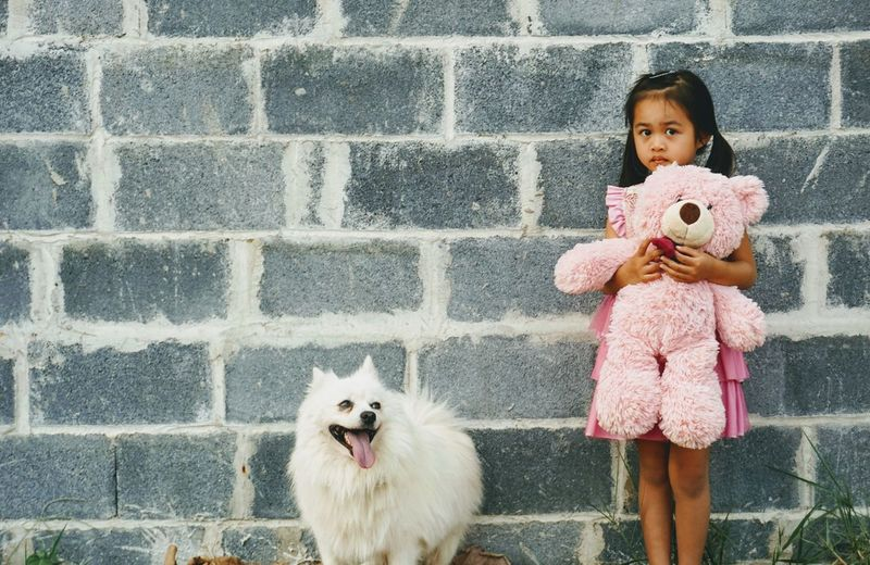 Portrait of cute girl with toy and dog standing against brick wall