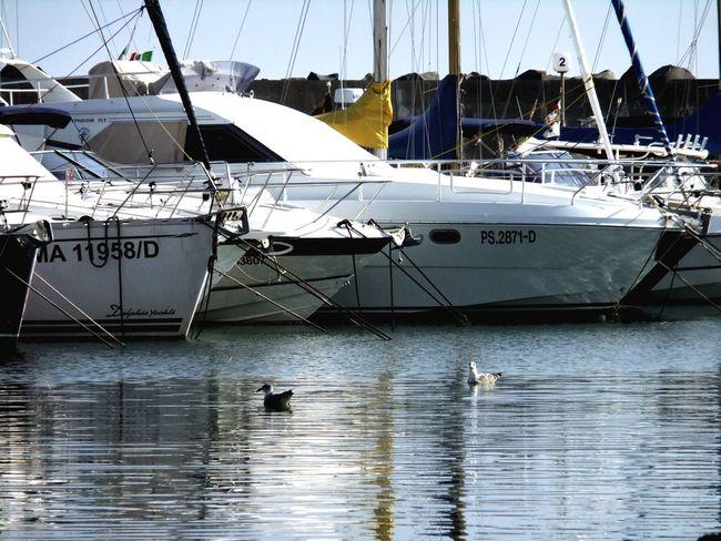 Yacht Sea Boats Porto Barche Ostia Fujifilm