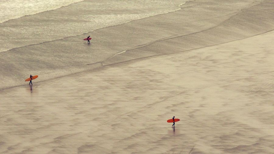 High angle view of people with surfboard walking on shore at beach