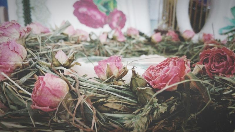 Soft Roses Dried Flowers Herbarium Filmcamera Interior Design Interior Nature Flovers
