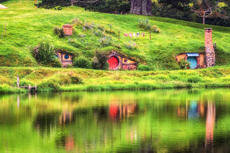 hobbit holes with small lake reflection in hobbiton, new zealand Beauty In Nature Green Green Color Hobbit Hobbit Hole Hobbit Holes Hobbiton Holiday Home Lake Landscape Lord Of The Rings Matamata Movie Set Nature New Zealand No People Non Urban Scene Outdoors Pond Scenics Shire Travel Tree Water