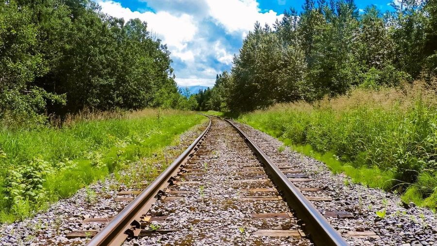Train road - Quebec Picoftheday Abandoned Nikonphotography EyeEmNewHere Nikon Quebec Canada Plant Tree Rail Transportation Track The Way Forward Direction Railroad Track Nature Transportation Growth Cloud - Sky Outdoors Green Color Sky Beauty In Nature Sunlight No People Day EyeEmNewHere