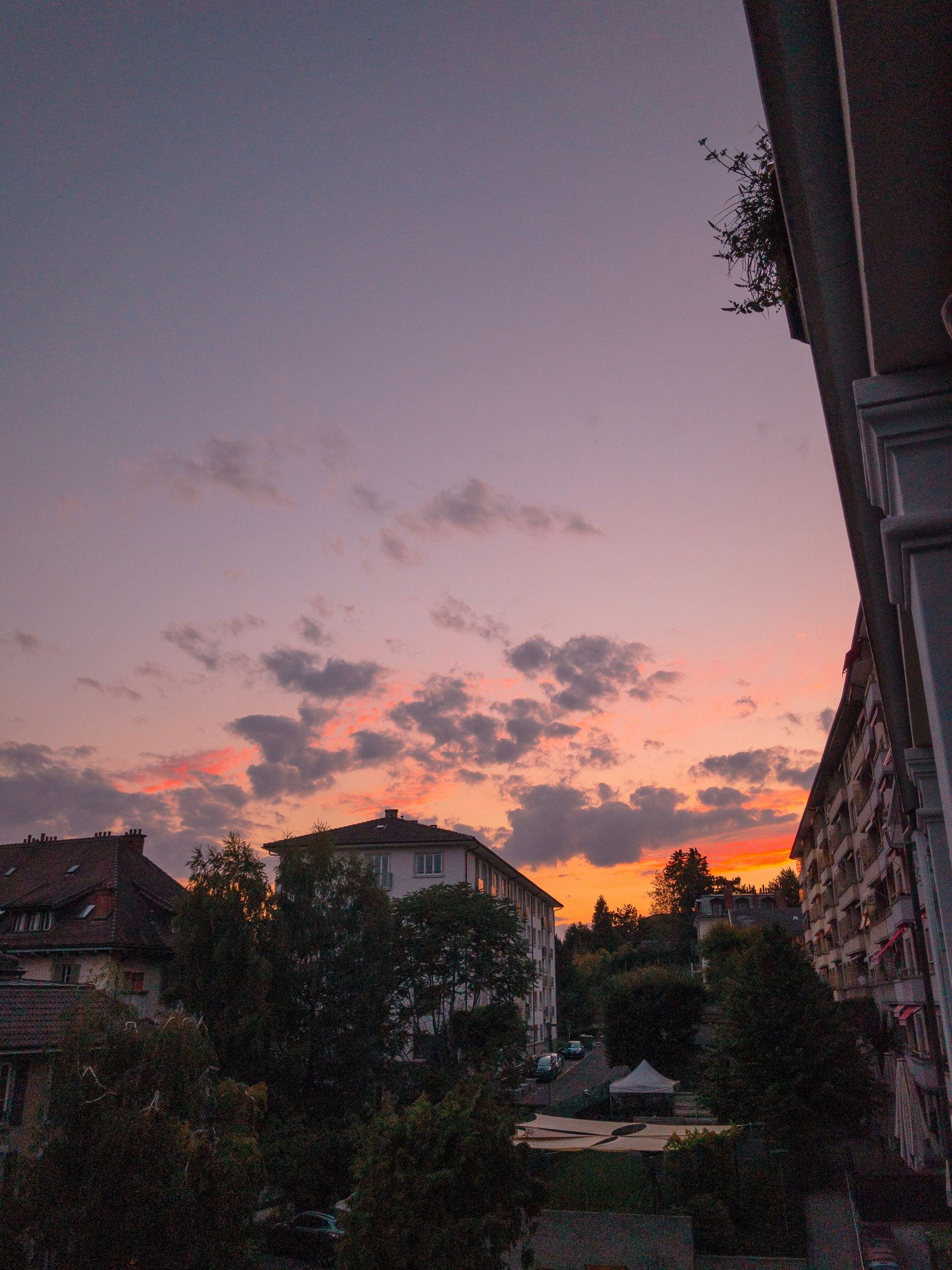 sky, sunset, architecture, built structure, building exterior, cloud - sky, city, nature, orange color, tree, no people, plant, building, outdoors, residential district, transportation, house, beauty in nature, copy space, street, place