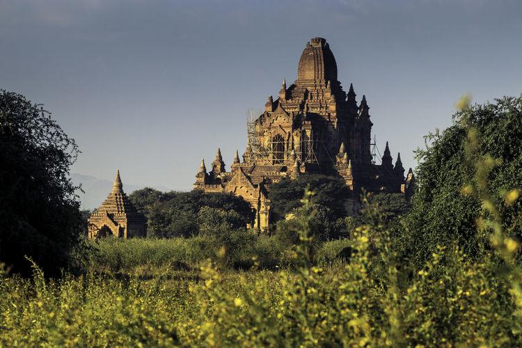 Bagan Nature