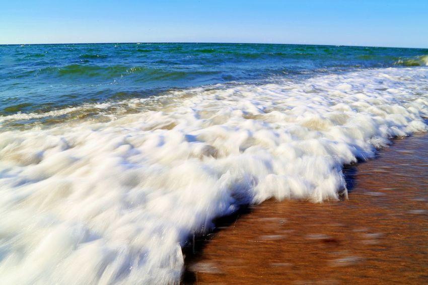 Surf Beach Blurred Motion Day Horizon Horizon Over Water Land Motion Nature Outdoors Scenics - Nature Sea Shoreline Water Wave