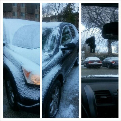 I did my best.. the woes of Snow Winter worries.Izziesedgar Photogrid