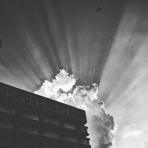CalcuttaInstagrammers Sky Kolkata City People Love Durgapuja Autumn Light Sun