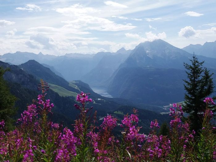 Mountains And Sky Landscape_Collection Mountains Mountain View Landscape_photography Lake Mountain Flower Nature Valley Mountain Range Landscape Beauty In Nature