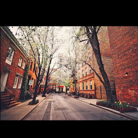 New york street in Springs 😊😉😍👍✌👌 Amazing_captures Amazing Places To See Awesome_shots Awsomenature Best View Beautiful City Beautiful Nature EyeEm Best Shots My Best Photo 2015 NYC Street