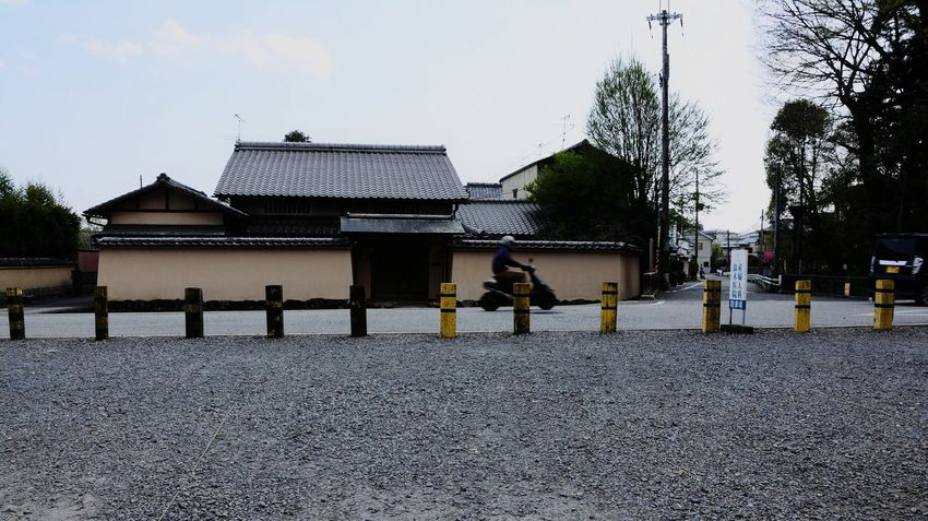 Architecture Built Structure Sky Day Outdoors Building Exterior Japan Roof Religious Architecture 京都 Kyoto Tree Bike Streetphotography Street Road Pole Yellow River Capture The Moment Moments Motion Art Is Everywhere The Secret Spaces Break The Mold TCPM