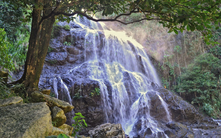 Balagbag Waterfalls Beautiful Nature Flowing Green Landscape Mountain Range Nature Nature Photography Power In Nature Relaxing Rock Tranquil Scene Trees Water Waterfall Landscapes With WhiteWall Perspectives On Nature
