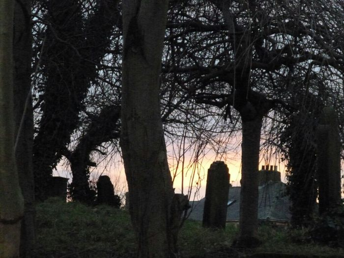 Graveyard Beauty Ghostly Atmospheric Sunset 2