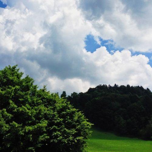Be yourself; everyone else is already taken. — Oscar Wilde Weather Hike Sky Alps Ranch Bachtel Green Alp Blue Cloud Woods Orn Forest Zürich Mountain Switzerland Meadow Hill Clouds Vscocam Wood
