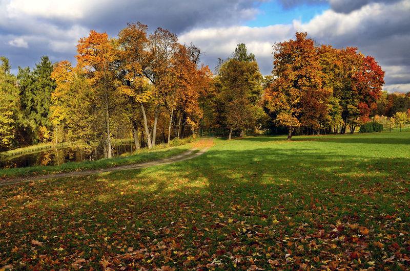 Autumn day in