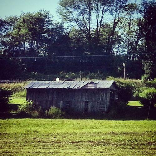 Leaning shack, peeling roof Dryrot Ruraldecay Shed Peeling roof farm field susquehanna pennsylvania