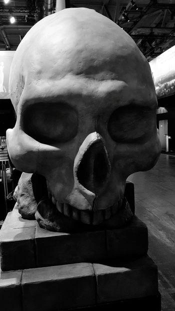 Gothic Gamescom Pirates Blackandwhite Black And White Close-up Skull Human Skeleton Sculpture Skeleton Bone  Human Skull Statue