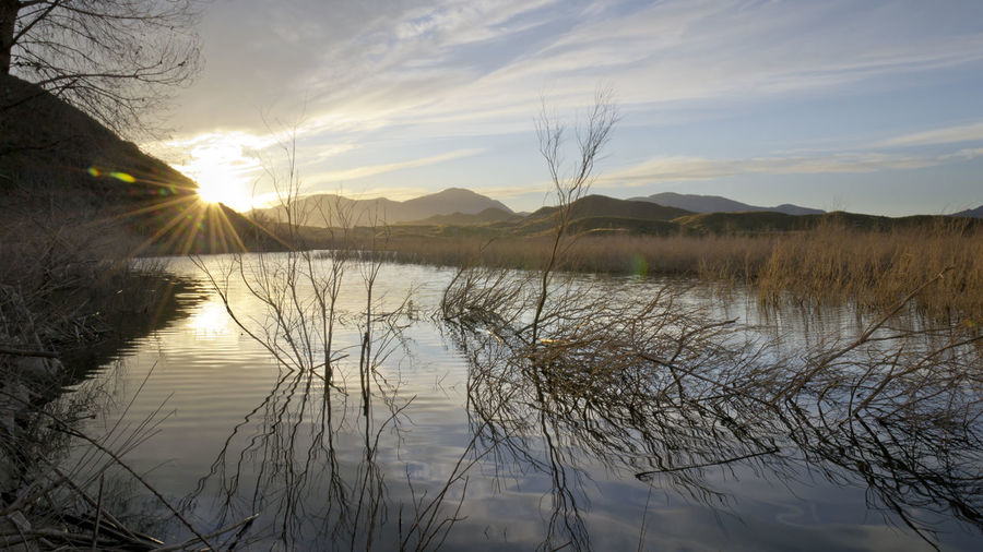 Beauty In Nature Day Lake Landscape Lorca Mountain Napatu Nature No People Outdoors Pantano De Puentes Reed - Grass Family Reflection Sky Sun Tree Water Wetland