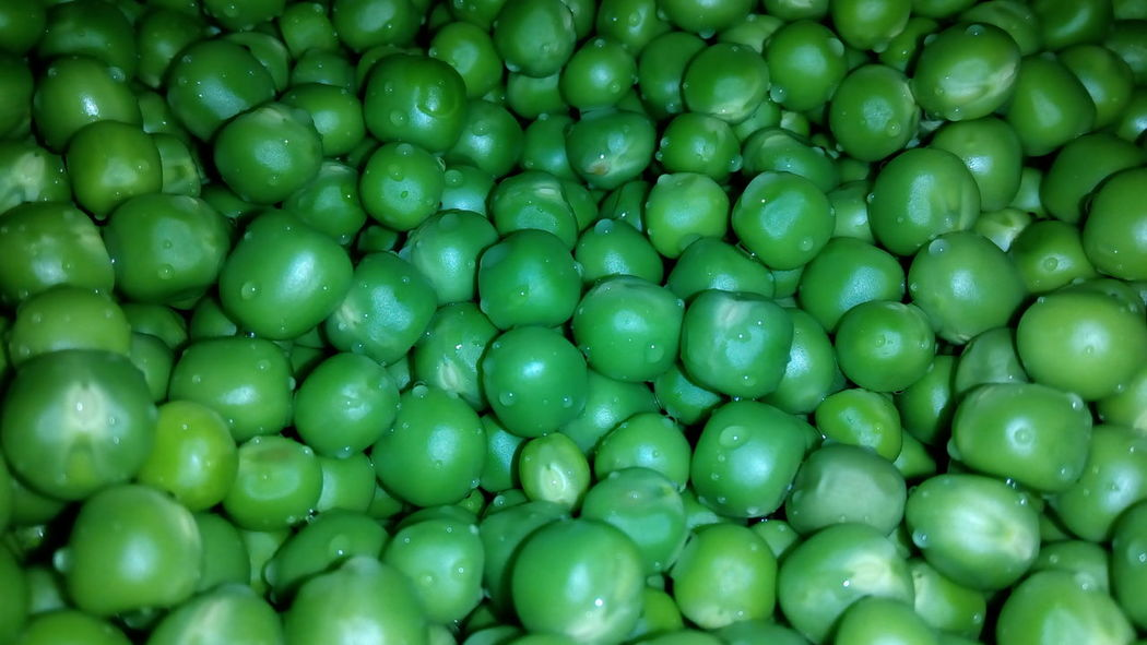 Green Color Backgrounds Full Frame Fruit No People Freshness Food Close-up Large Group Of Objects Healthy Eating Indoors  Day Green Pea Green Peas Pulses Nature