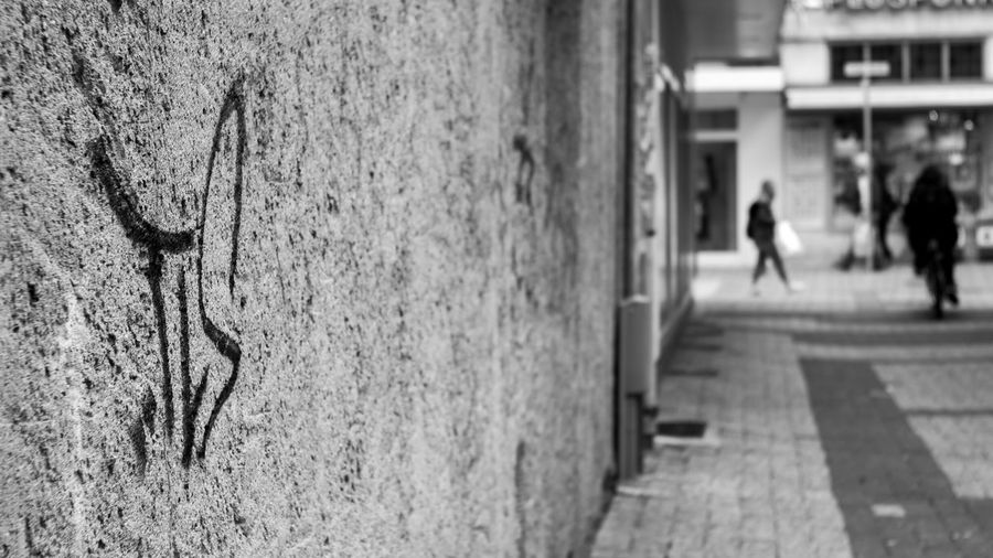 To the window... To the WALL. :) Hanging Out Taking Photos Blackandwhite Black & White Snapshots Of Life Wall Monochrome Streetphotography Streetphoto_bw Eye4photography  EyeEm Best Shots - Black + White 50mm City Delmenhorst Urban Carl Zeiss Jena Graffiti Sony taken with Sonynex6