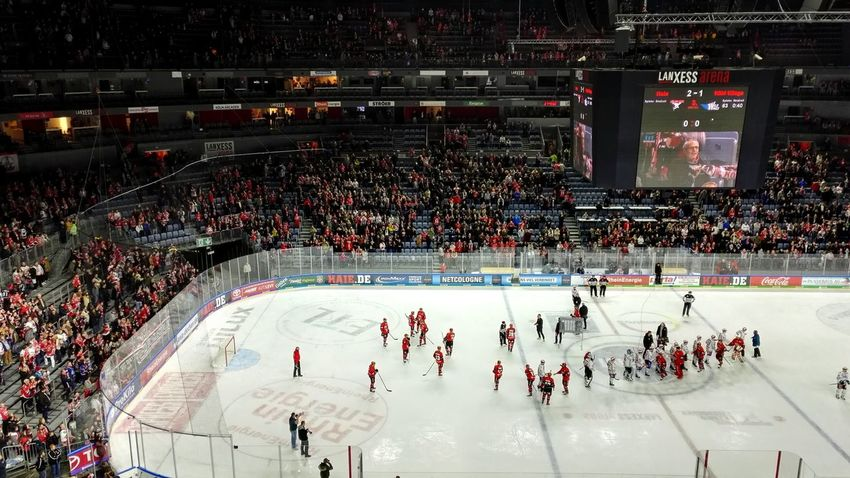 Kölner Haie Lanxess Arena Ice Rink Ice Hockey Stadium Sport Hockey Winter Sport Ice-skating